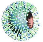 Grippe-Virus